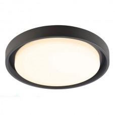 Потолочный светильник уличный Ascella 348067